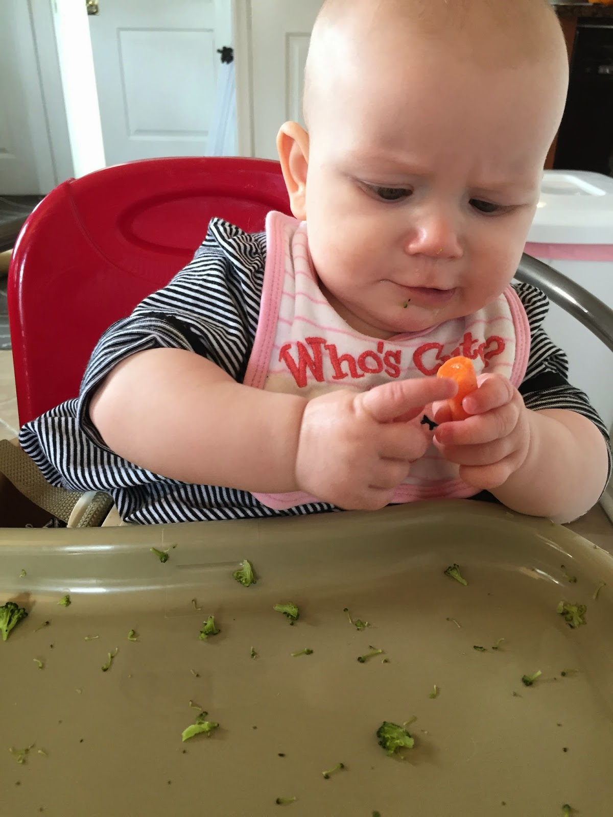 baby lead weaning, blw, baby weaning, food, baby, baby food, babyledweaning