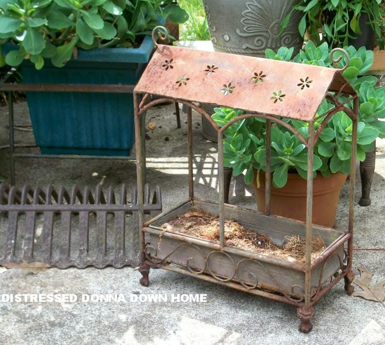 Rusty planter, cream can, round mahogany table