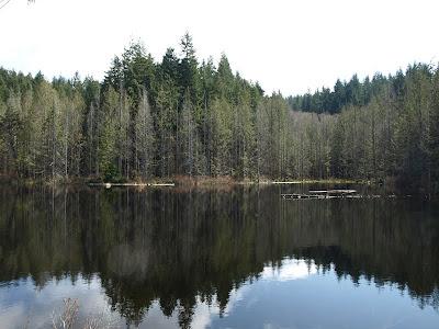 Pine and Cedar Lake Hike