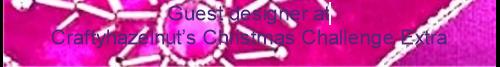Jan 2014 Guest Designer