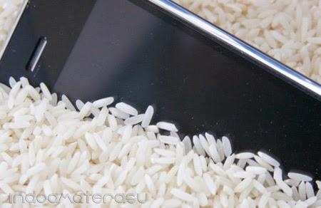 Ponsel direndam dalam beras