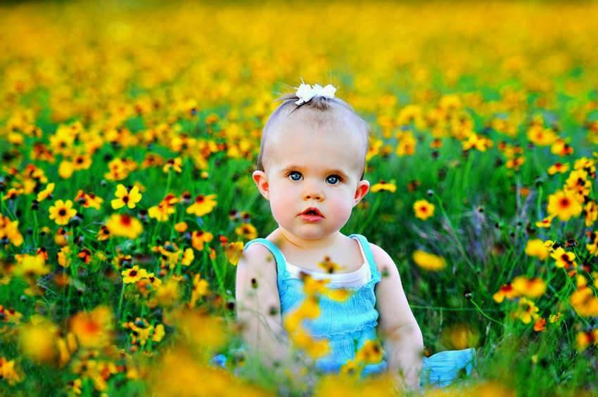 Download gambar bayi cantik di taman bunga