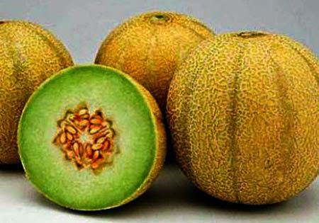 Kandungan Gizi Nutrisi Buah Melon & Manfaatnya