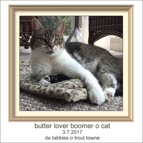 R.I.P. Boomer