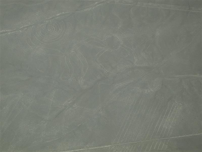 Líneas de Nazca - El mono