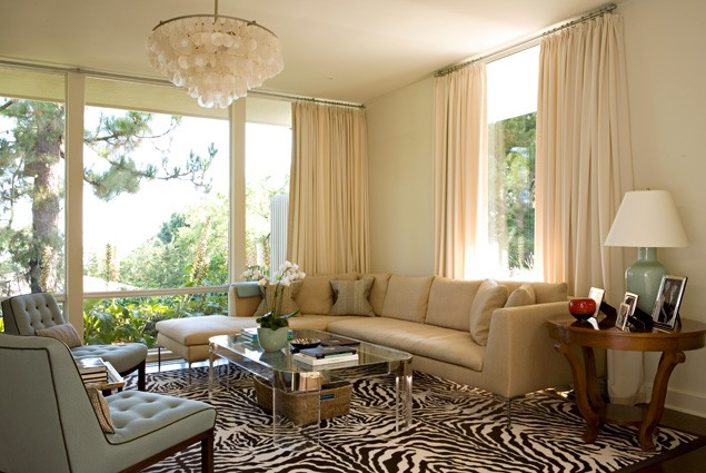 Living Room Zebra Rug hear them roar! - the enchanted home
