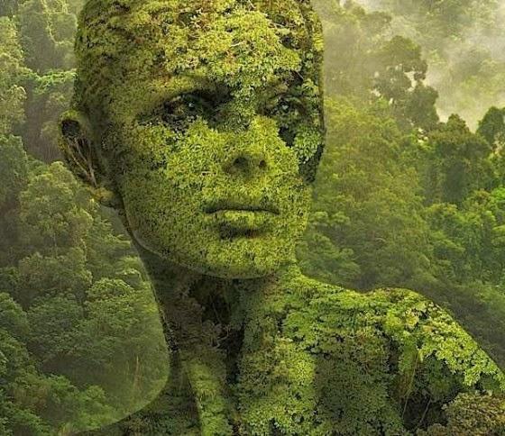 Bv fleur onderzoek surrealisme - Ruimte van de jongen kleur schilderen ...