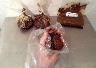 pâte de henné congelée