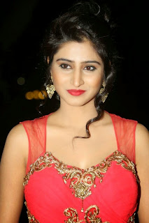 Shamili Transparent Red Saree Latest Unseen Pictureshoot (12).JPG