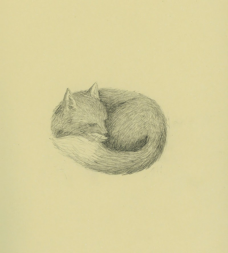 sleeping fox - yara dutra