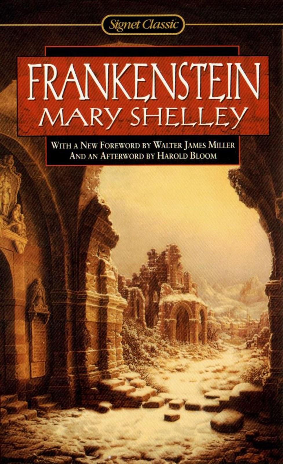 mary shelleys novel frankenstein essay