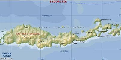 Letak Maumere, Sikka dan Paga di Pulau Flores