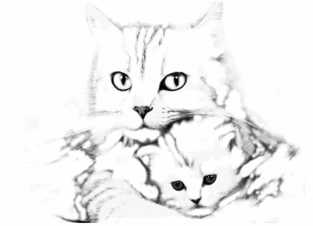 Une p 39 tite balade miribel coloriage maman chat et son - Jeux gratuits de bebe chat ...