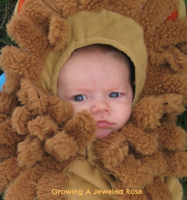 Lion infant costumes- The Wizard of Oz costumes