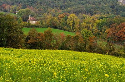 Landscape image of the french countryside in autumn