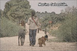 Marina Sebastián