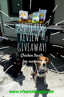 Spot Farms dog treats review and giveaway. Try the chicken!