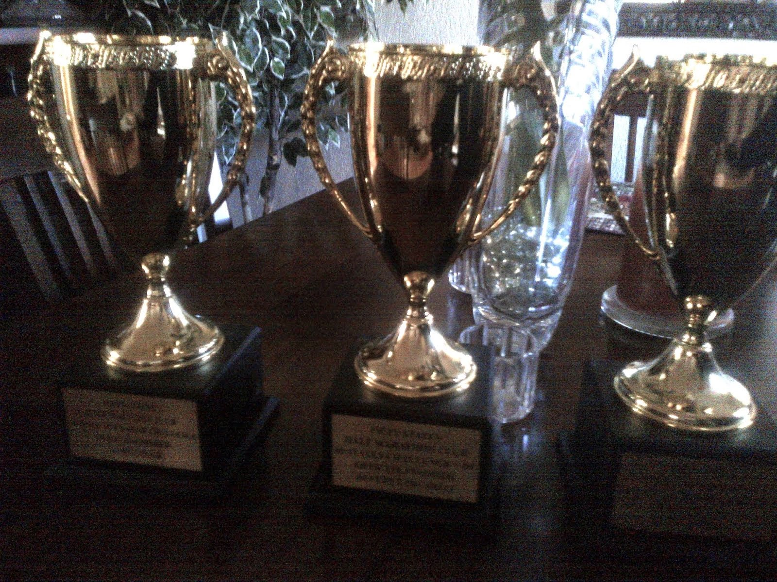 50 States Challenge Finisher Trophies