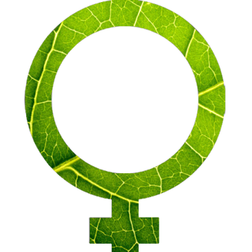 Global Ecofeminism