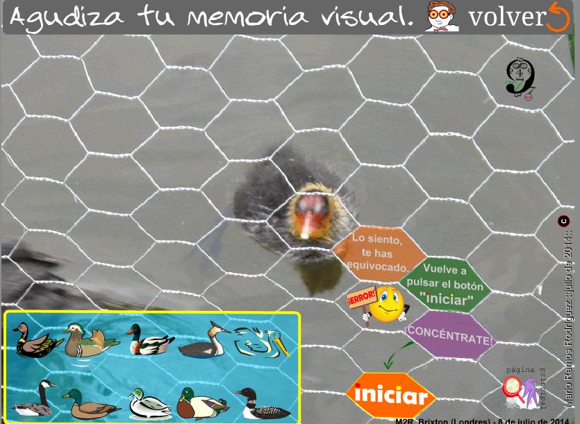 http://www3.gobiernodecanarias.org/medusa/eltanquematematico/memoria/cargador_mp.html
