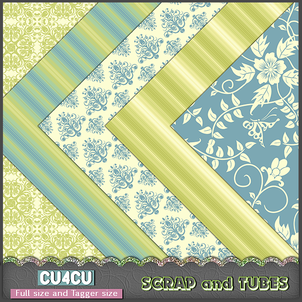 Pretty Papers 15 (FS/CU4CU) .Pretty+Papers+5_Preview_Scrap+and+Tubes