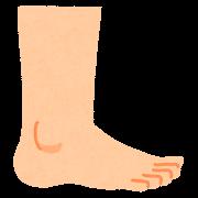 横から見た足のイラスト