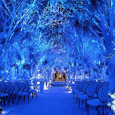 Post Wedding Party on If The Ring Fits  Pulling Your Theme Together   Winter Wonderland