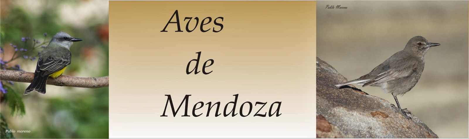 Aves de Mendoza