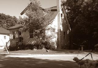 History Dogs: Denny and Dexter visiting 85 Hall Street. Copyright Catherine McDiarmid-Watt, from OshawaJournal.com