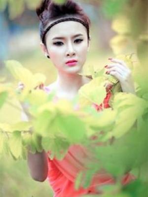 Hoa Phù Dung Vtv9