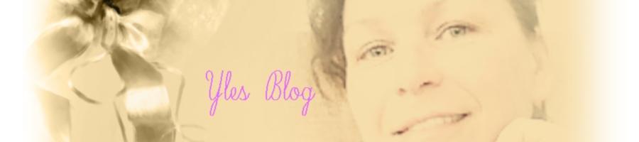 Yles Blog