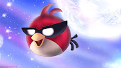 #5 Angry Bird Wallpaper