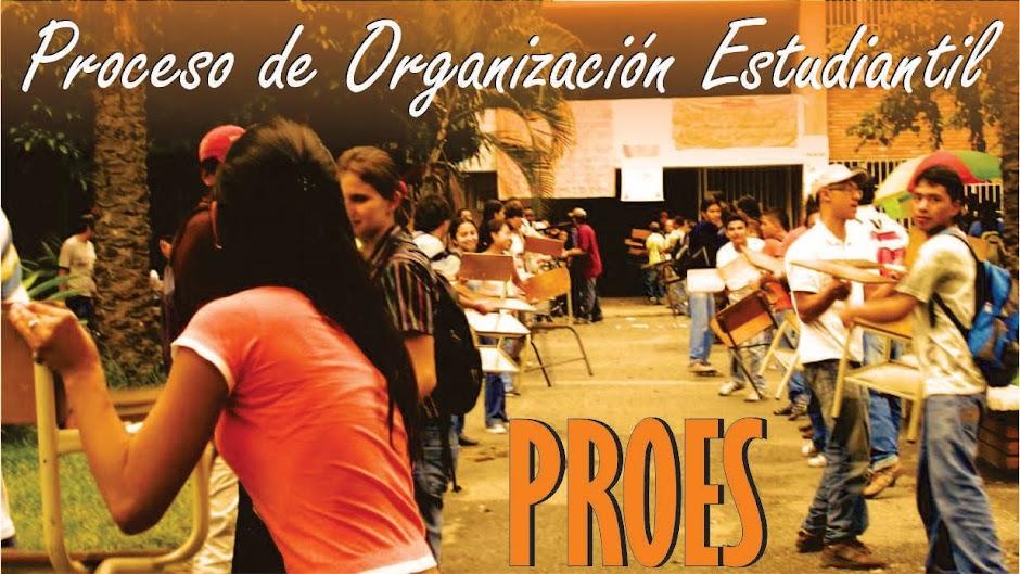 Proceso de Organización Estudiantil - Universidad Nacional de Colombia- Sede Palmira