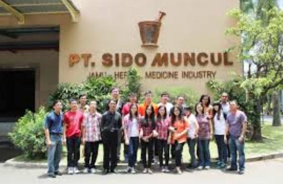 Lowongan Kerja PT Sido Muncul Di Semarang