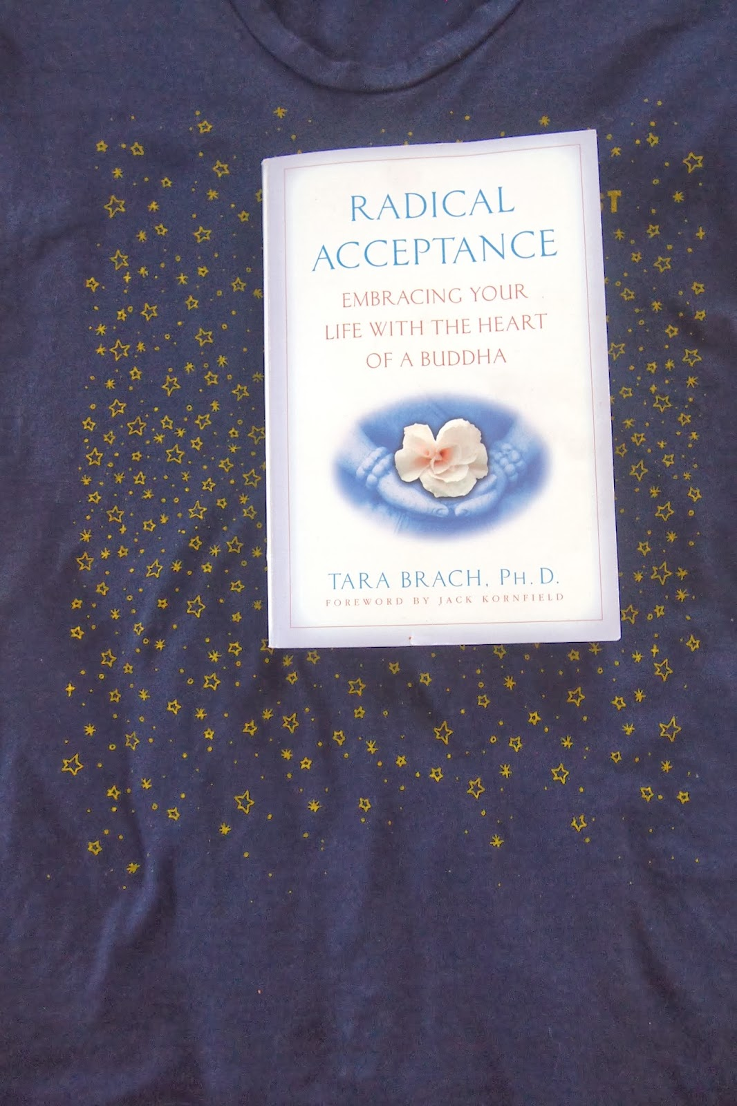 015 - Radical Acceptance Review
