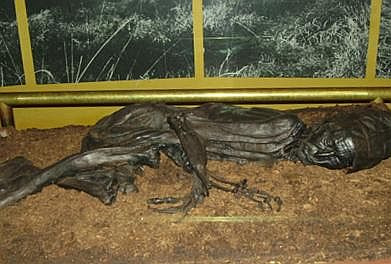 tollund man radiocarbon dating The carbon-14 dating method has been used several times in order to date the  tollund man thus placing him as one the most precisely dated finds from.