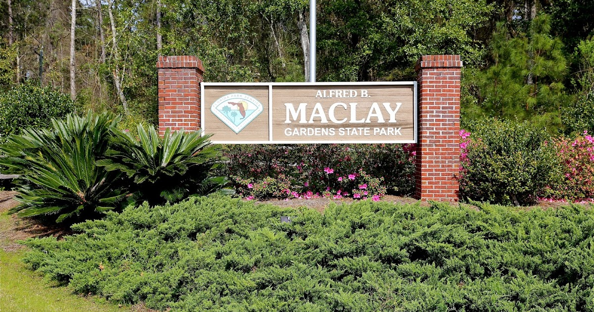 Sweet Southern Days: Maclay Gardens in Tallahassee, Florida