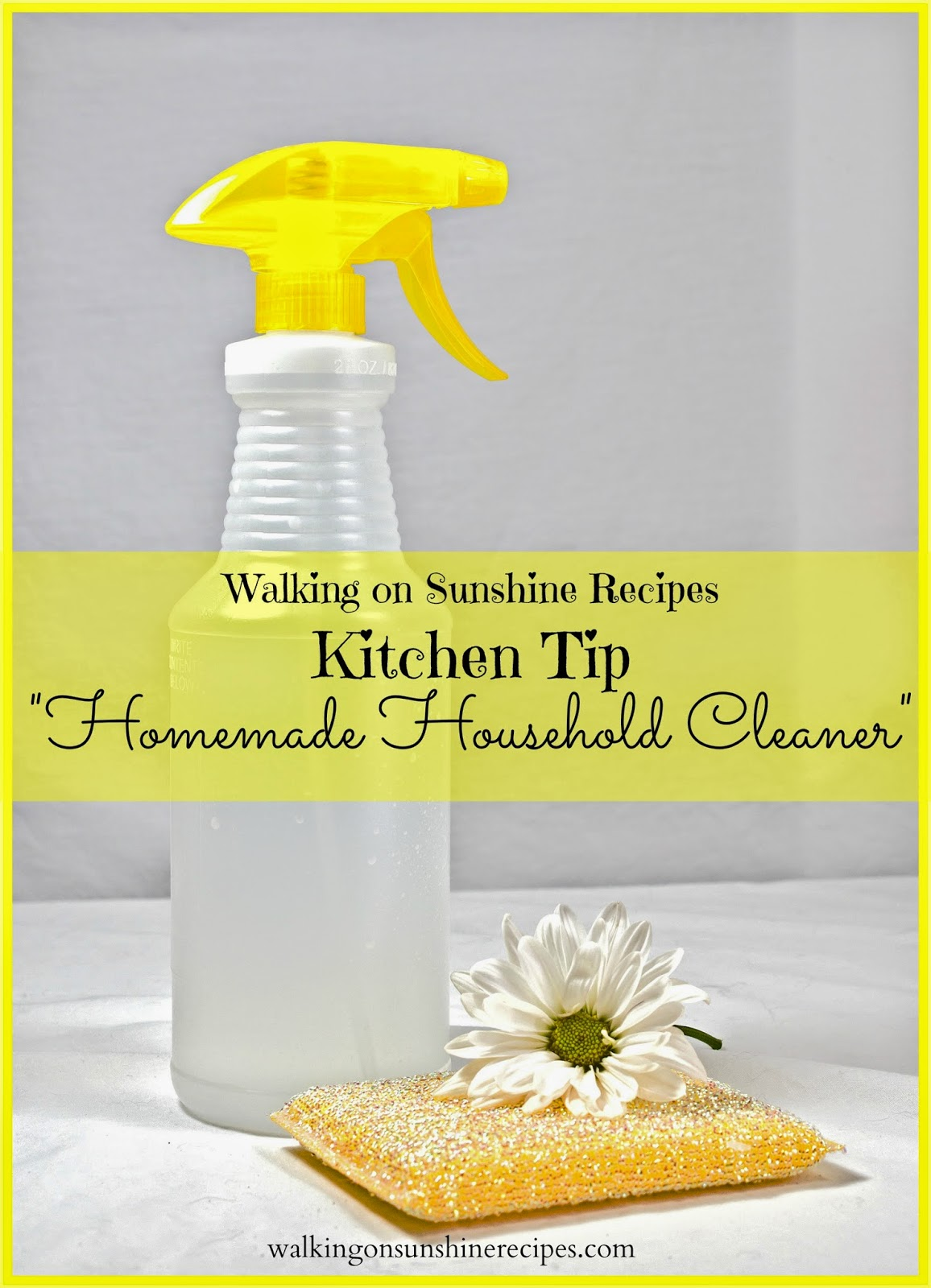 Use this easy homemade household cleaner in your house and you will save money!