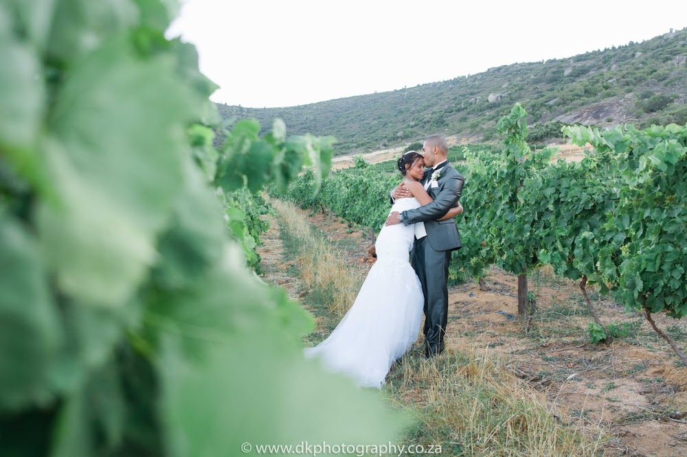 DK Photography CCD_9818 Preview ~ Gretchen & Ruzeed's Wedding in Rhebokskloof Wine Estate  Cape Town Wedding photographer