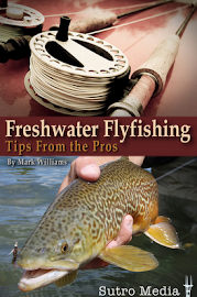 Freshwater Flyfishing Tips From the Pros