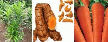 Pengertian Zat Aditif pada Makanan (Alami dan Buatan) serta Fungsinya
