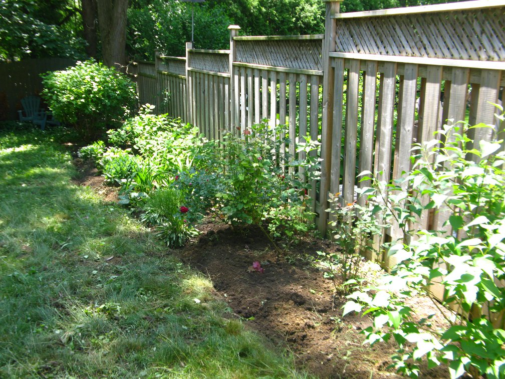 Toronto backyard garden bed after weeding and edging by Paul Jung Gardening Services