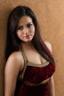 Sana Khan Hot in Gajjala Gurram