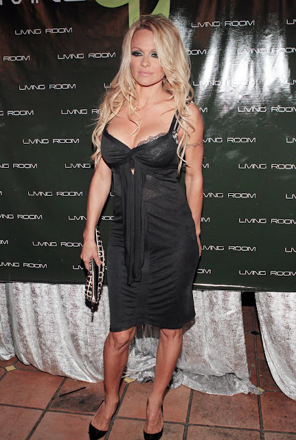 72313 pamelaanderson atthe3rdannualsilverparty2011 Pamela Anderson   Silver Party in Fort Lauderdale HQ [May 20, 2011]