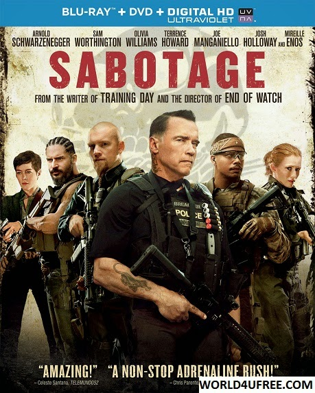 Sabotage 2014 Hindi Dubbed Dual Audio BRRip 480p 300mb ESub