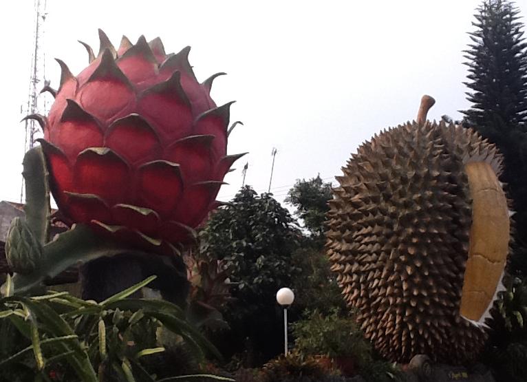 Tempat Wisata di Bogor Warso Farm Bogor