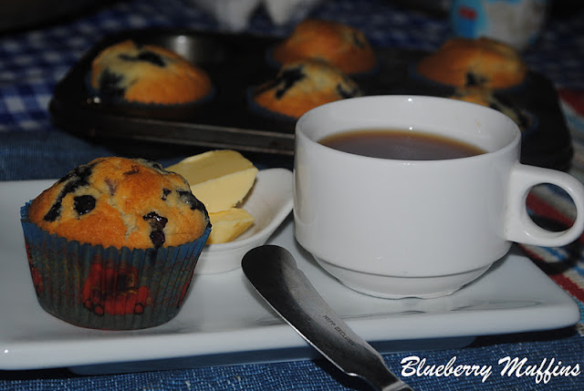 best blueberry muffins donna hay christmas