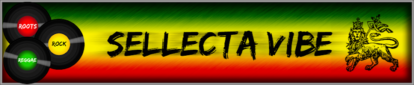 Sellecta Vibe