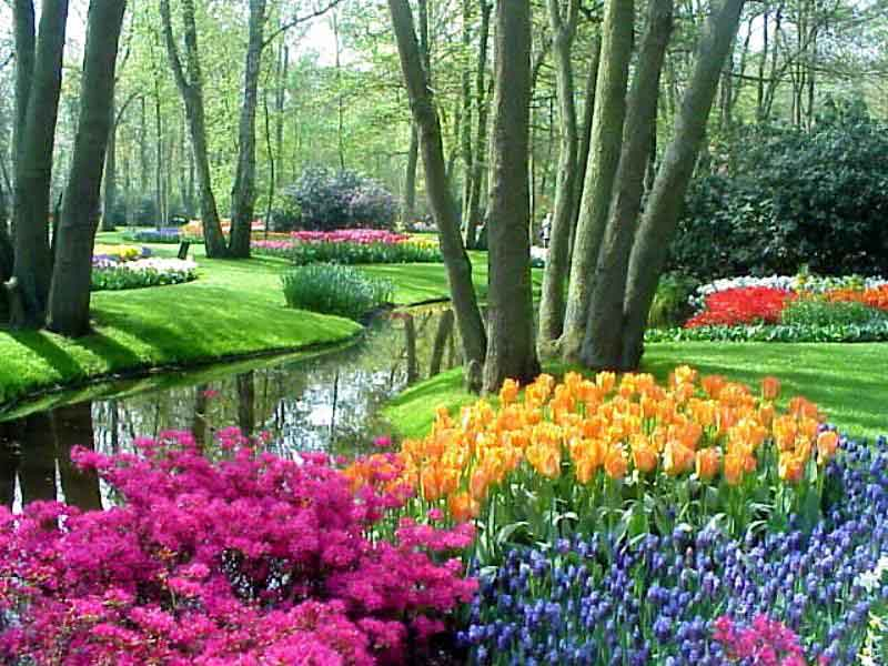 top world travel destinations keukenhof gardens netherlands On famous gardens in holland