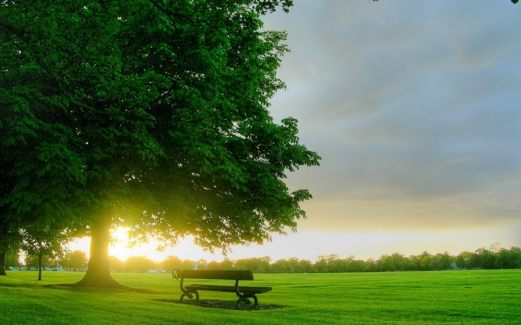 These Are All Very Beautiful And Amazing Wallpapers Of Good Morning Wallpaper For Facebook Most People In The World Like